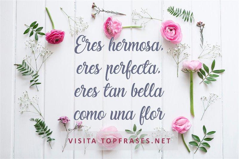 Poemas De Amor Cortos Y Bonitos Muy Románticos