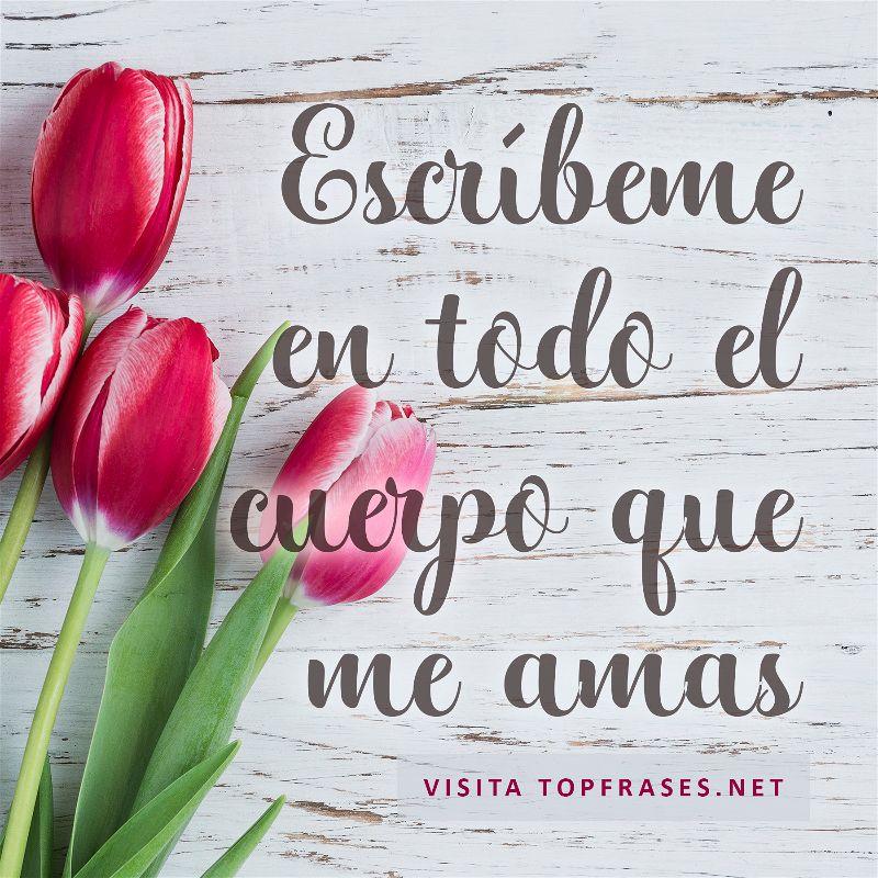 Versos De Amor Cortos Y Románticospara Enamorar